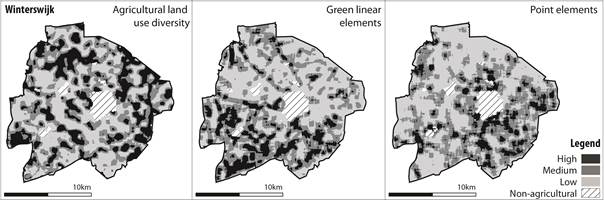Spatial distribution of agricultural land use diversity, linear and point elements in the agricultural area of Winterswijk National Landscape.